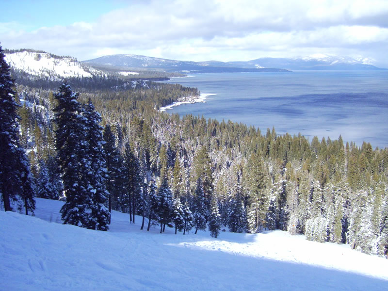south lake tahoe single guys Backing to ca conservancy land, with miles of forest & meadow and lake tahoe golf course steps away, this beautifully updated single story home is move-in ready.